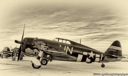 Razorback Jug. Planes of Fame Air Show