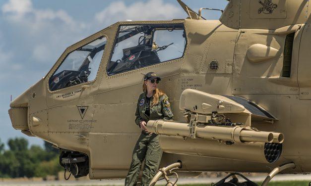 Pilot and her cobra