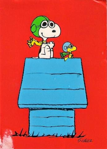 #happyfriday #flying #peanuts