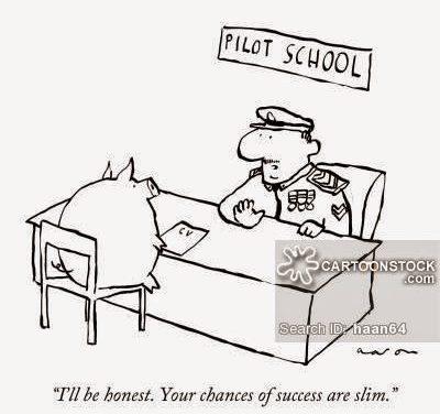 #slimchance #flyingpig #pilotlife