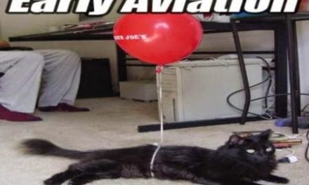 #earlyaviation #aviationhumor #flyingcats