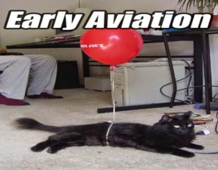#earlyaviation #aviationhumor #flyingcats