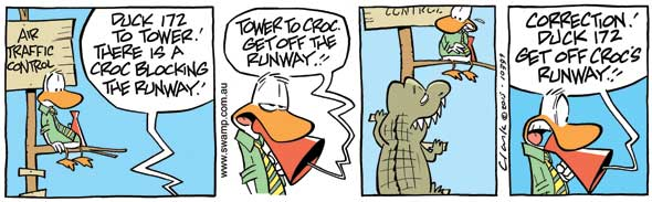 Runway Hazards