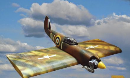 """""""Spitfire Wing""""  one of our first straight wing flying wings."""