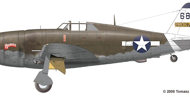 """A Republic P-47 """"Thunderbolt"""" from the Pacific Theater of Operations"""