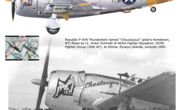 """A Republic P-47N """"Thunderbolt"""" from the Pacific Theater of Operations."""