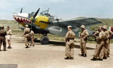 An Iraqi Bf-110 in 1941 during the Iraqi Uprising against the British, to which both Germany and Italy gave support…
