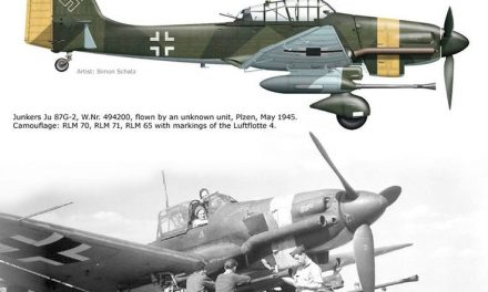 """A recent post from my WWII GERMAN AVIATION collection.  A favorite of mine, the """"Stuka"""" converted to a tank hunter!"""