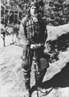 A recent post that I created on the famous WWII Japanese ace Hiroyoshi Nishizawa.