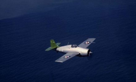 Two images of an early F4F Wildcat in pre-war markings in flight.