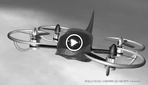 """Pollywog Quad FPV""  with flotation bumpers and fuselage with rudder, the Pollywog is mostly another exercise in…"