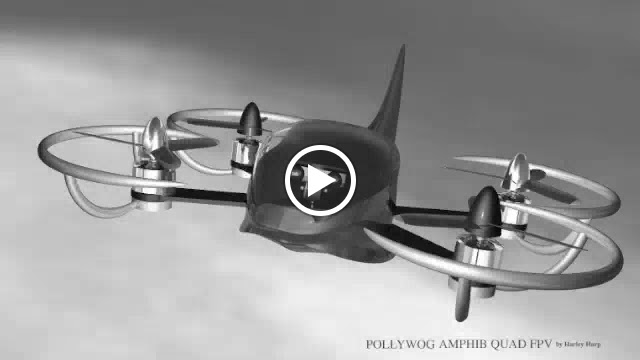 """""""Pollywog Quad FPV""""  with flotation bumpers and fuselage with rudder, the Pollywog is mostly another exercise in…"""